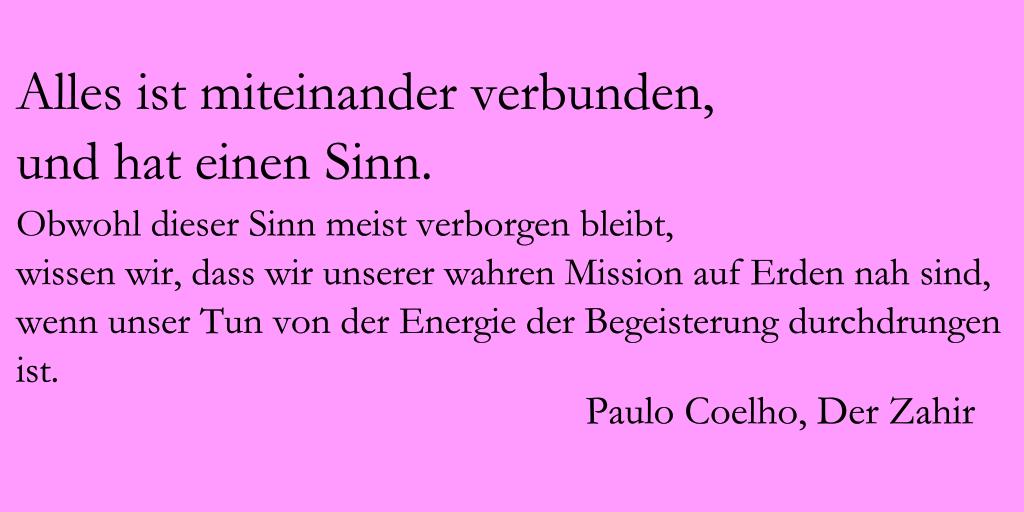 Coelho Sinn in der Begeisterung