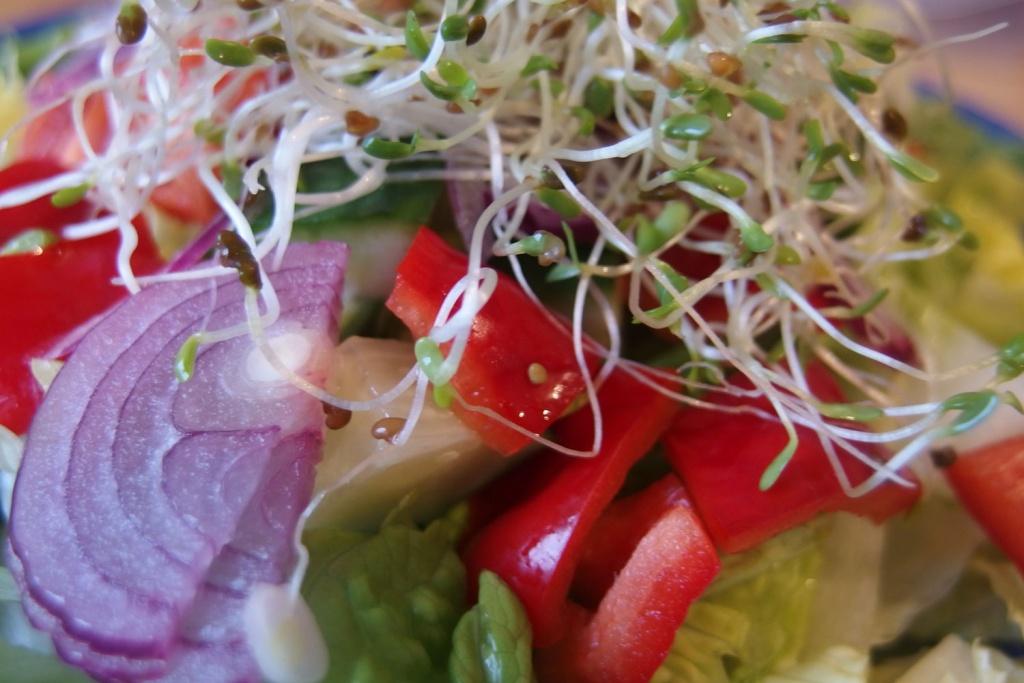 Salat-FB